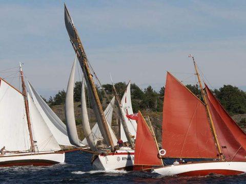 Trebåtfestivalreggaten